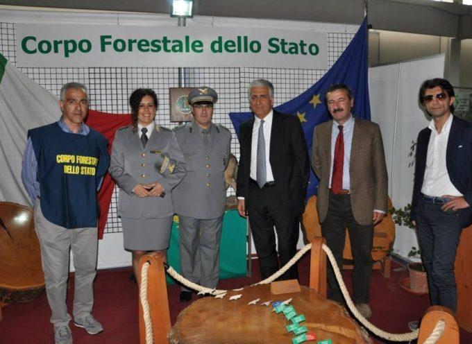 Il CFS al Calabria Expo Edilizia a Rende