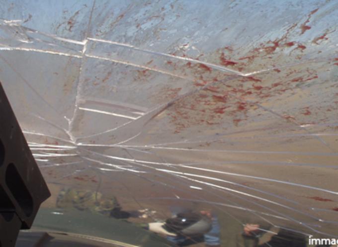 Belmonte – Finiscono con l'auto in un burrone, muore un ragazzo di 20 anni