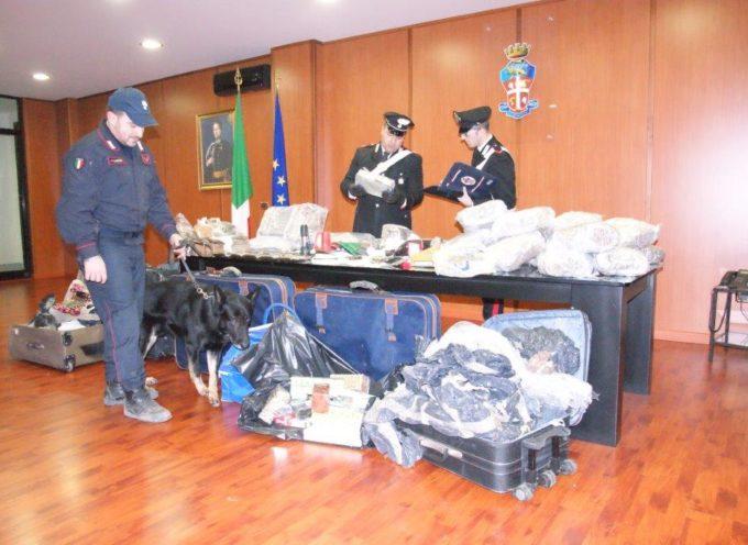 Blitz dei Carabinieri a Cosenza, scoperte armi e droga