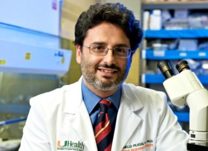 Il calabrese Antonello Pileggi eletto Presidente della Miami Scientific Italian Community