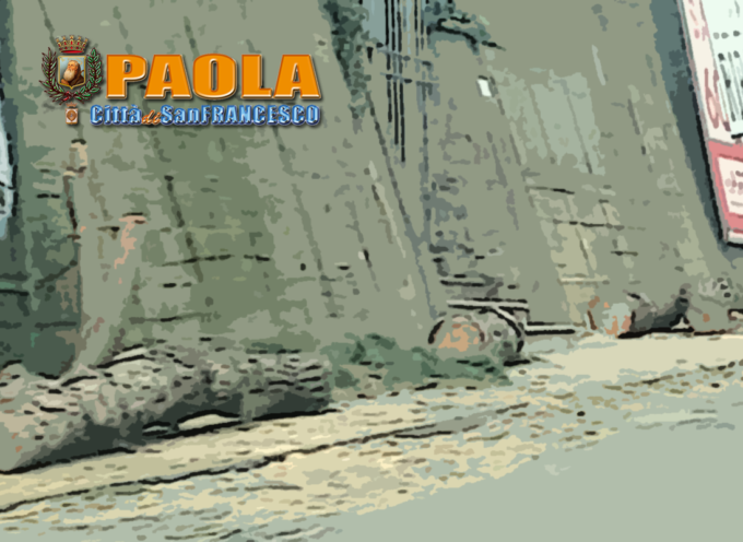 Paola – Abbattuti gli storici Pini di Via Nazionale