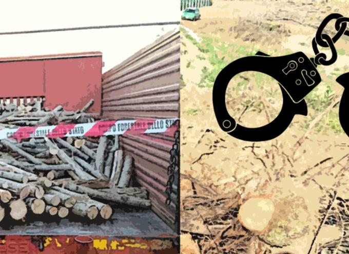 Illegalità in Montagna – Arrestati due uomini e partite due denunce