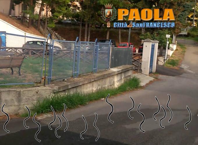 Paola – Marina irrigata di acqua potabile, Viale dei Giardini di acqua nera