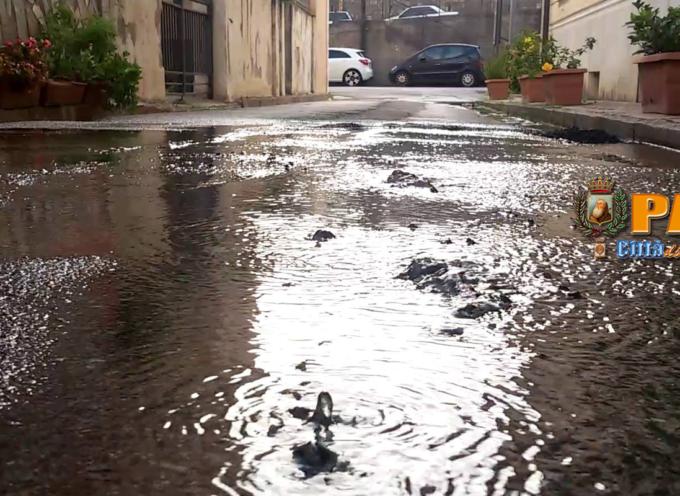 """Paola – La Marina """"irrigata"""" con acqua potabile – VIDEO"""