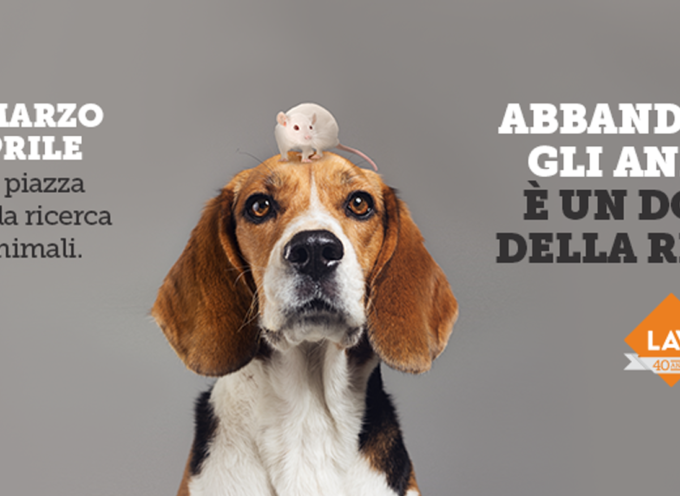 La ricerca può (e dovrebbe) fare a meno degli animali. Campagna LAV