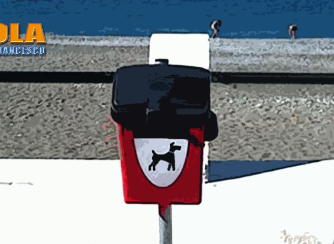 """Paola: Lungo l'asse del waterfront (2Km """"e ritorno"""") solo 1 cestino per pupù"""