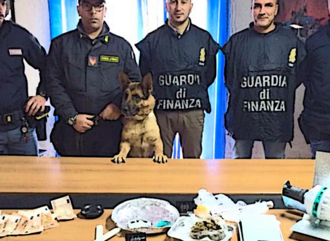 """Pizzicato"" spacciatore 27enne con in casa Cocaina, Hashish e Marijuana"