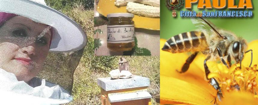 Paola – L'esempio di Badia, dove le api si tutelano con rispetto per la Biodiversità