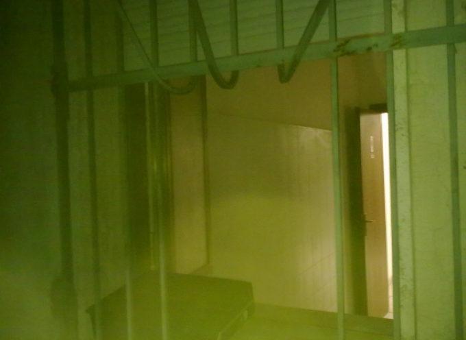 """Paola – Quando il carcere non è galera, esperimento """"creativo"""" in prigione"""
