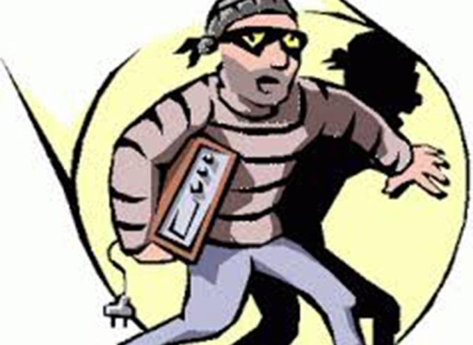 Topo d' appartamento arrestato in flagranza