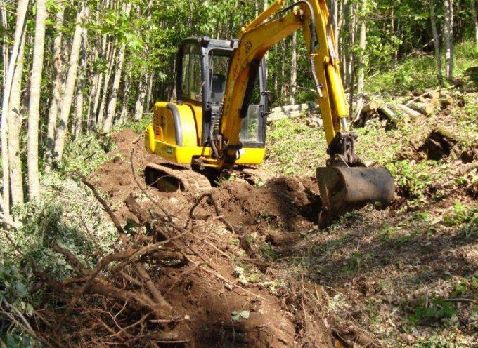 Allarga pista forestale senza permessi: denunciato