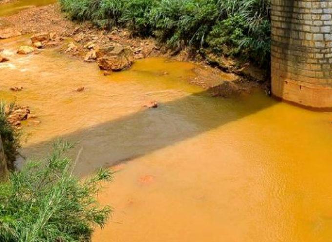 «Bonificare l'area inquinata». Catastrofe ambientale sulla costa