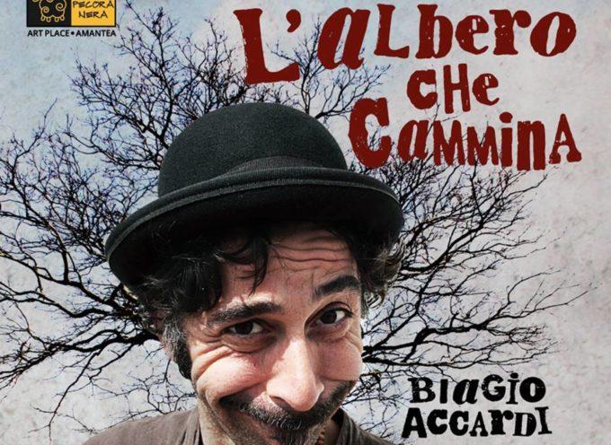"""Biagio Accardi. Libero dagli schemi con """"L'Albero che cammina"""""""