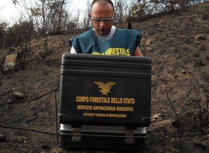 Paola. Una persona denunciata per incendio boschivo colposo