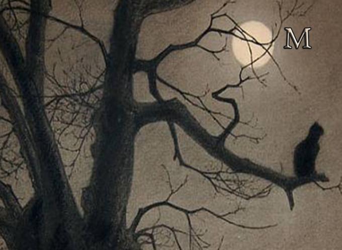 Il Cuore del Marsili – Poesia di inizio Anno