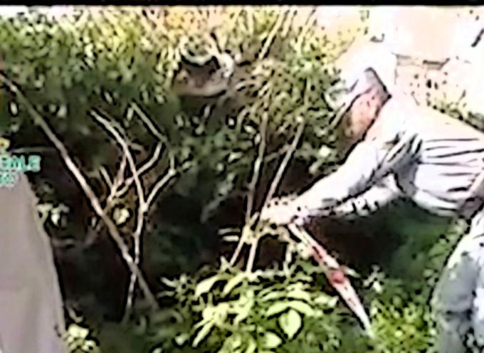 VIDEO – Parte della rete fognaria finisce sotto sequestro, immagini ufficiali