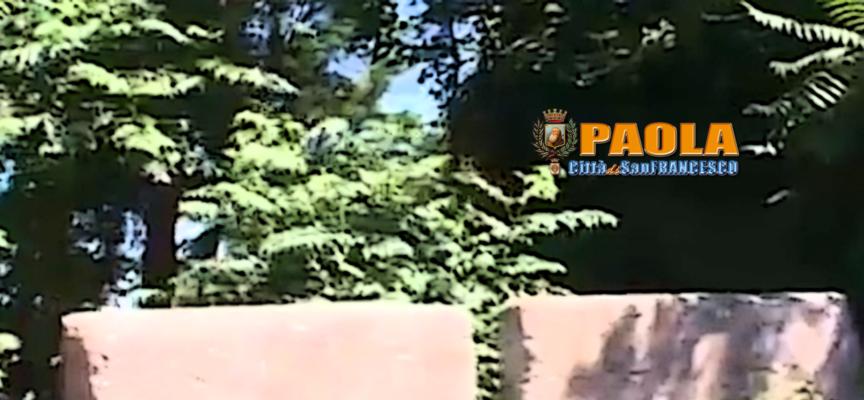 Paola – 33mila euro per pulire una scarpata a Rione Piano Torre