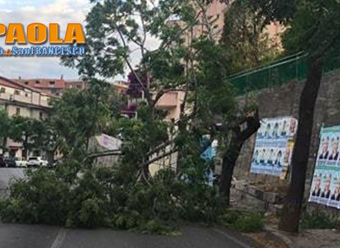 ULTIM'ORA: Paola – Forti raffiche di vento creano disagi lungo le strade