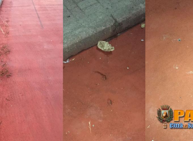 """Paola – Mentre il waterfront """"germoglia"""", previste """"piattaforme"""" di parcheggi"""