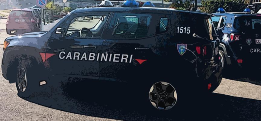 7Kmq sequestrati da nucleo Carabinieri Forestale per occupazione abusiva