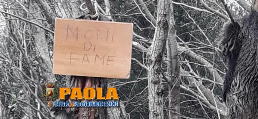 Paola: «Morti di fame». Macabro messaggio recapitato alla Pilusedda. Foto