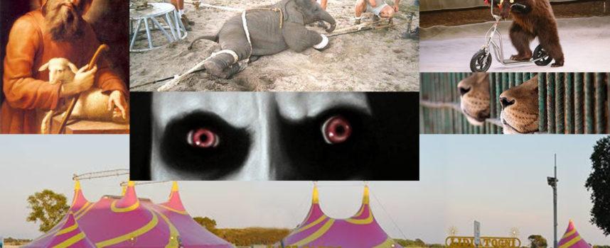 L'occhio del Maligno: sguardo sulle stranezze – Circo&Santo stanno bene?