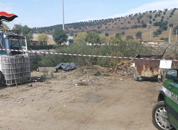 Smaltiva rifiuti bruciandoli dentro a un cassonetto: denunciato imprenditore