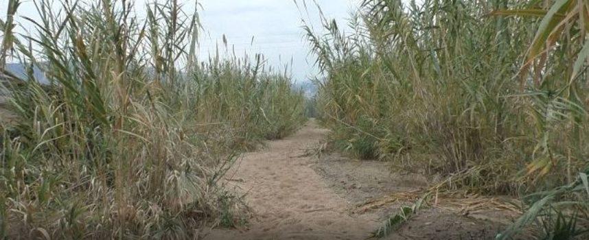 Parte la salvaguardia dell'assetto idrogeologico paolano: l'autunno incalza