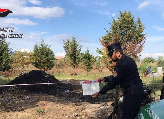Fumo di rifiuti bruciati invade l'autostrada: quattro persone denunciate