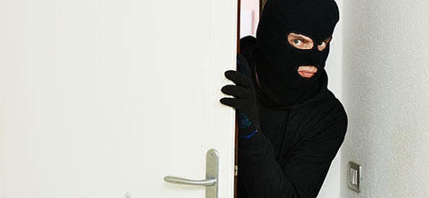 Paola – Vergogna nella notte: furto nella scuola elementare a Fosse